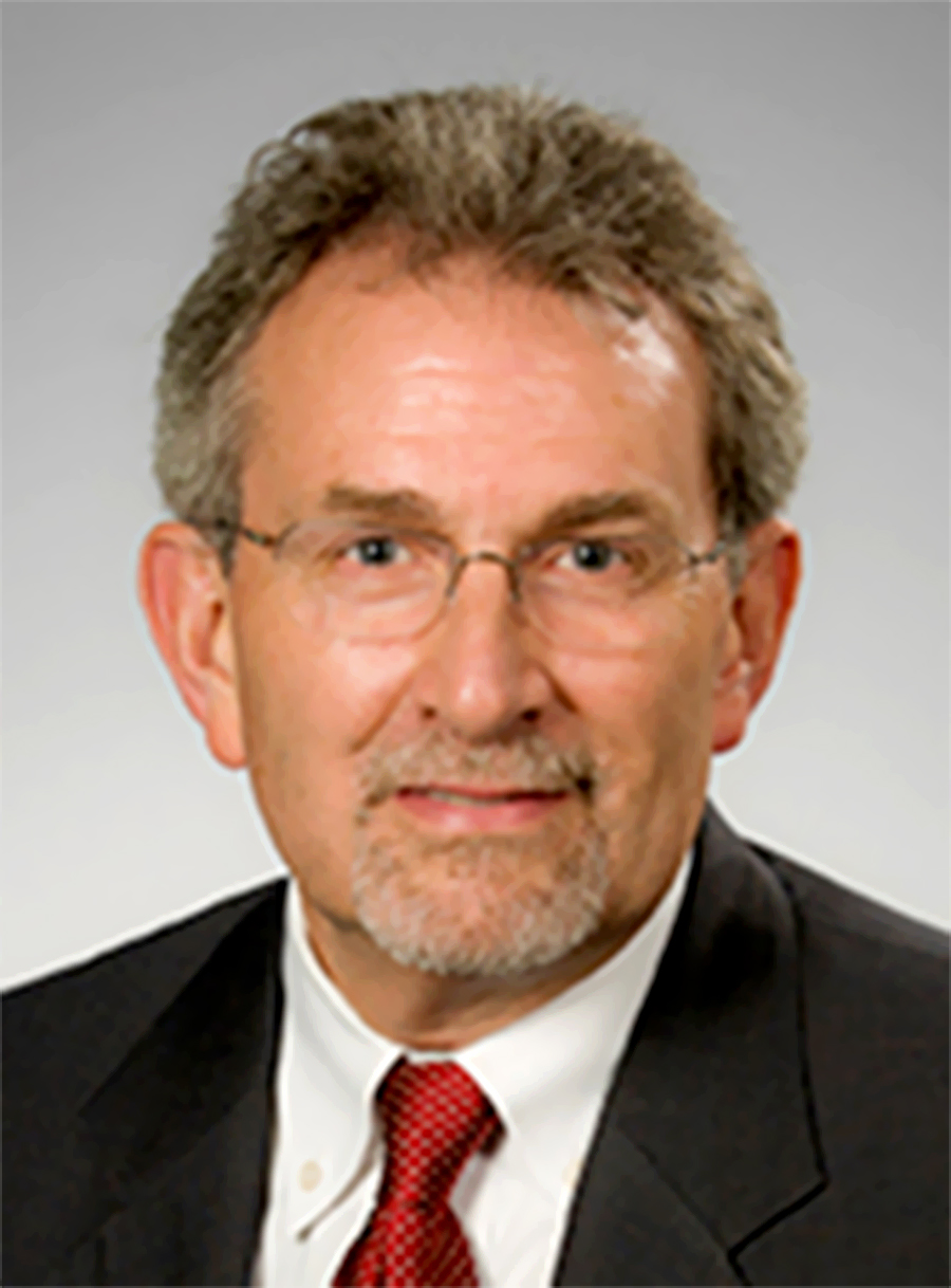Professor David Bjorkman